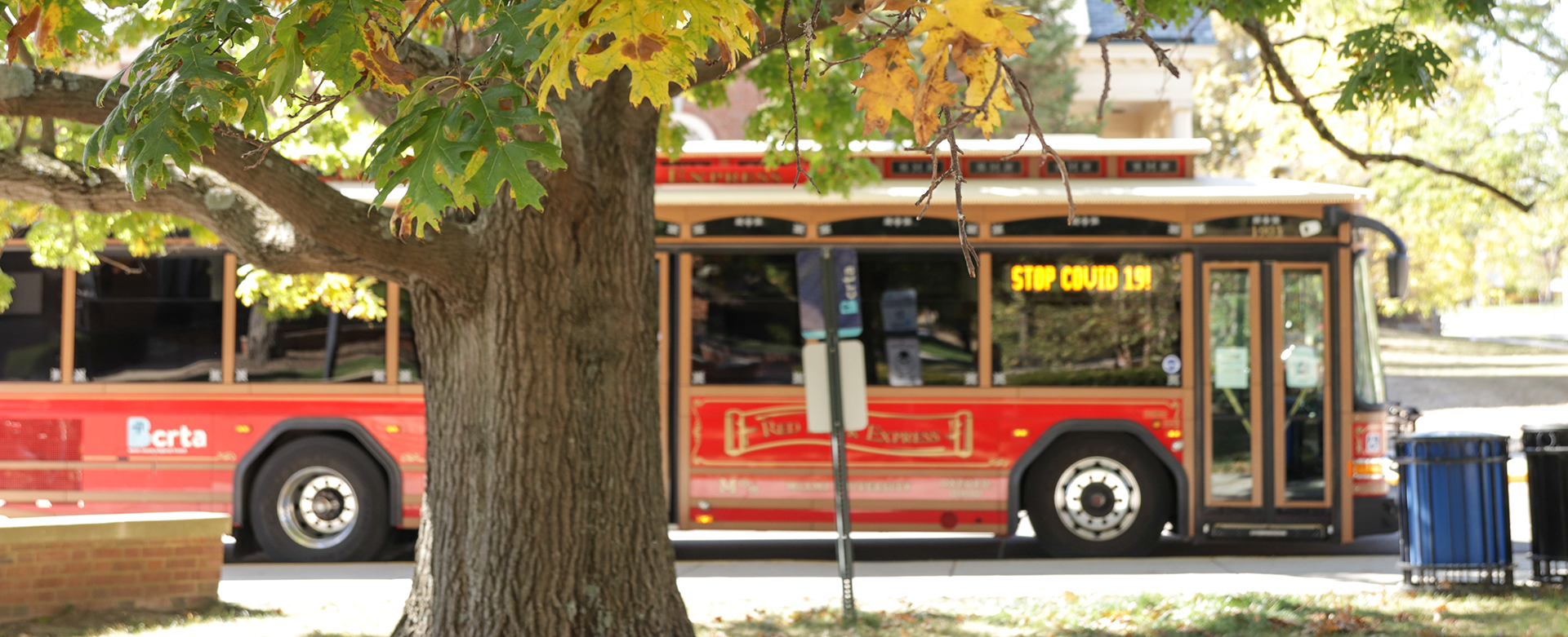 Trolley under Fall tree with
